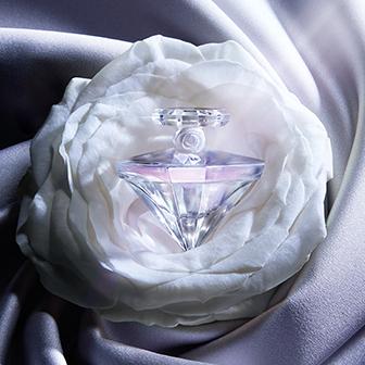 La Nuit Trésor Musc Diamant